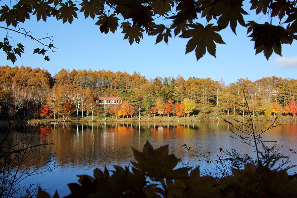 紅葉の女神湖